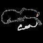 Ohrhörer mit Spiralschlauch, Inline PTT/Mikrofon
